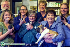 animal clinic of billings veterinarians