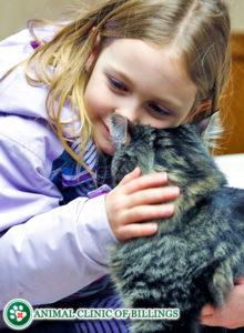 children loving animals
