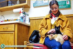 veterinary cat clinic