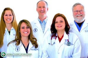 animal clinic of billings veterinarians