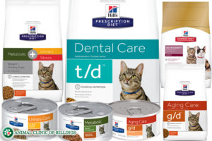 veterinarian recommended food for cats