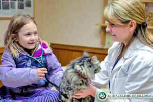 veterinarian teaching children to care for animals