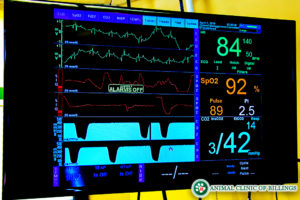 digital anesthetic monitor for surgery