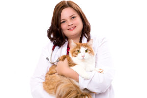 animal clinic of billings veterinarian Dr. Youngstrom